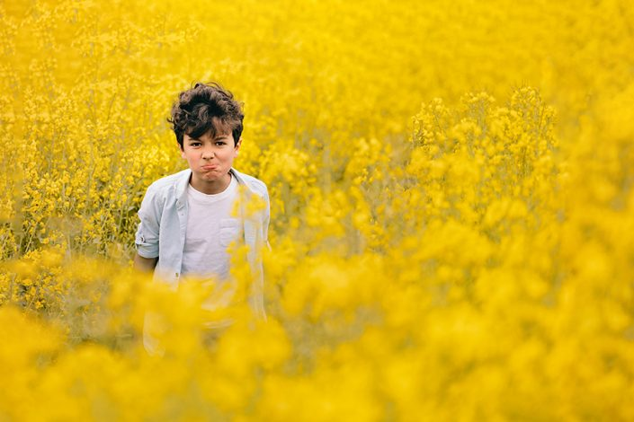 Helen Rowan Photography Yellow Oil Seed Field Spring 2