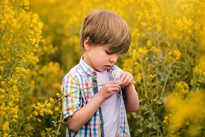 Helen Rowan Photography Yellow Oil Seed Field Spring 3