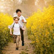 Helen Rowan Photography Yellow Oil Seed Field Spring 6